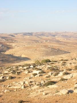Pasture at At-Tuwani